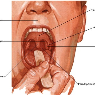 Oral cancer: talk to your patients about it